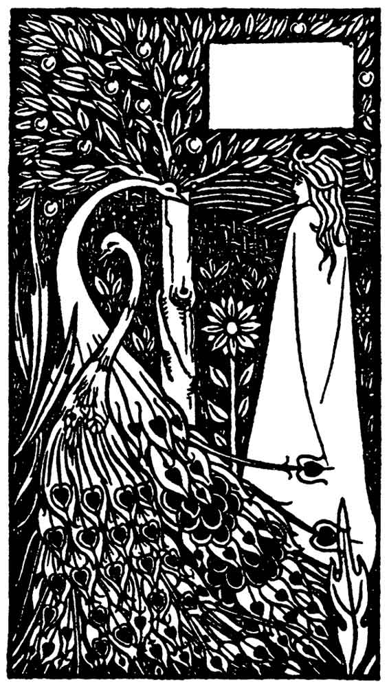 beardsley-peacock-in-the-farden-immage